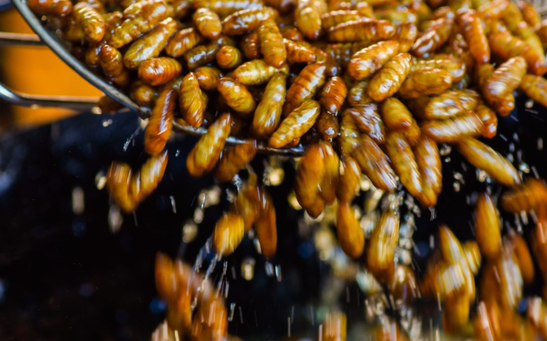 Edible Thai Insects as a Sustainable Superfood